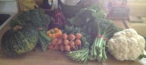 Harvest box 10-21-14