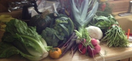 harvest box 11-4-14